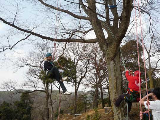 初級の樹は問題ないようですね。 それではジョンさんも一緒に樹上へお供いたします!