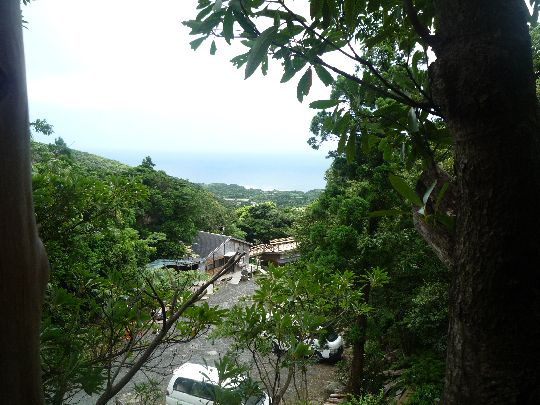 ツリーハウスからの眺めはこんな風景だよ!