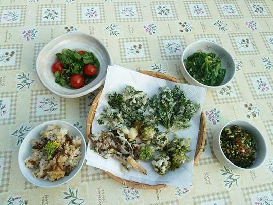 ジャ~ン!山菜フルコース!クレソンとトマトのサラダ。ツクシご飯。 天ぷら。ノカンゾウの酢味噌あえ、ノビルのおかかあえ