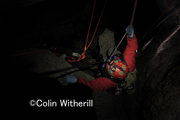ジョンがセコイアの幹の内部を調査に行きます。 寒い、冷たい、暗い、でもそこには出会いがあった!