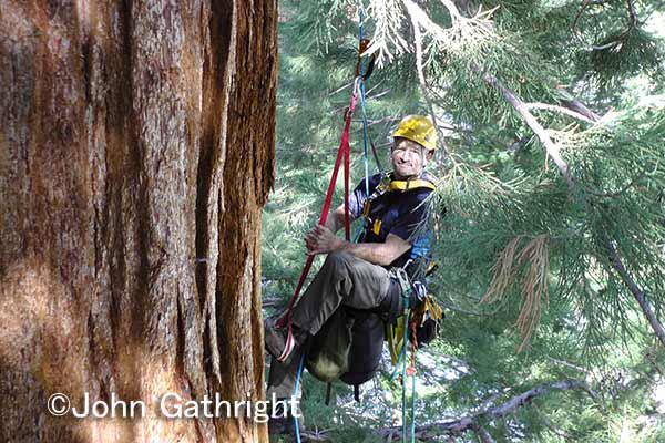 スコッティー、ジョンとはアメリカで登るときのツリークライミングバディーだ。