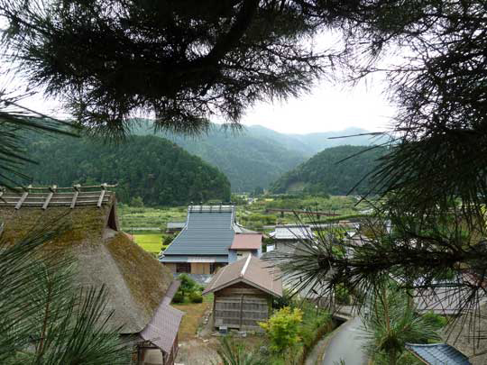 樹上からの里山の風景